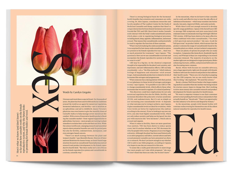 issue04-spread07.jpg
