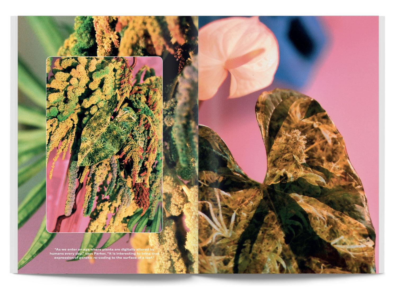 Broccoli_Issue05_5.jpg