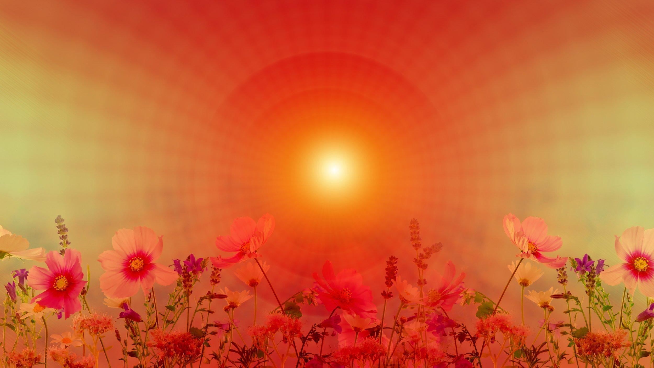 meditation-3265849.jpg