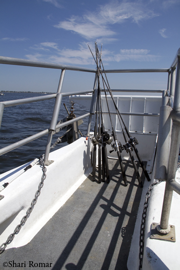 Fishing rods on the Eagle