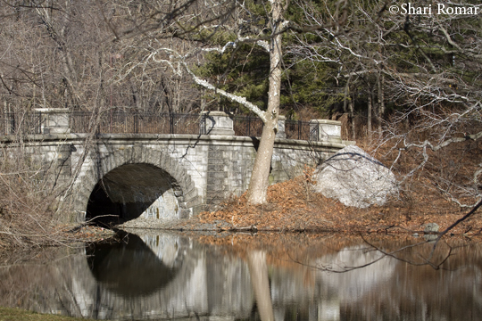 Bronx River Bridge at New York Botanical Garden