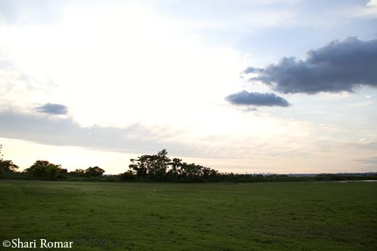 Broad Channel American Fields Park
