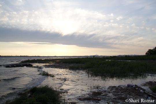 Big Egg Marsh, Broad Channel American Fields Park