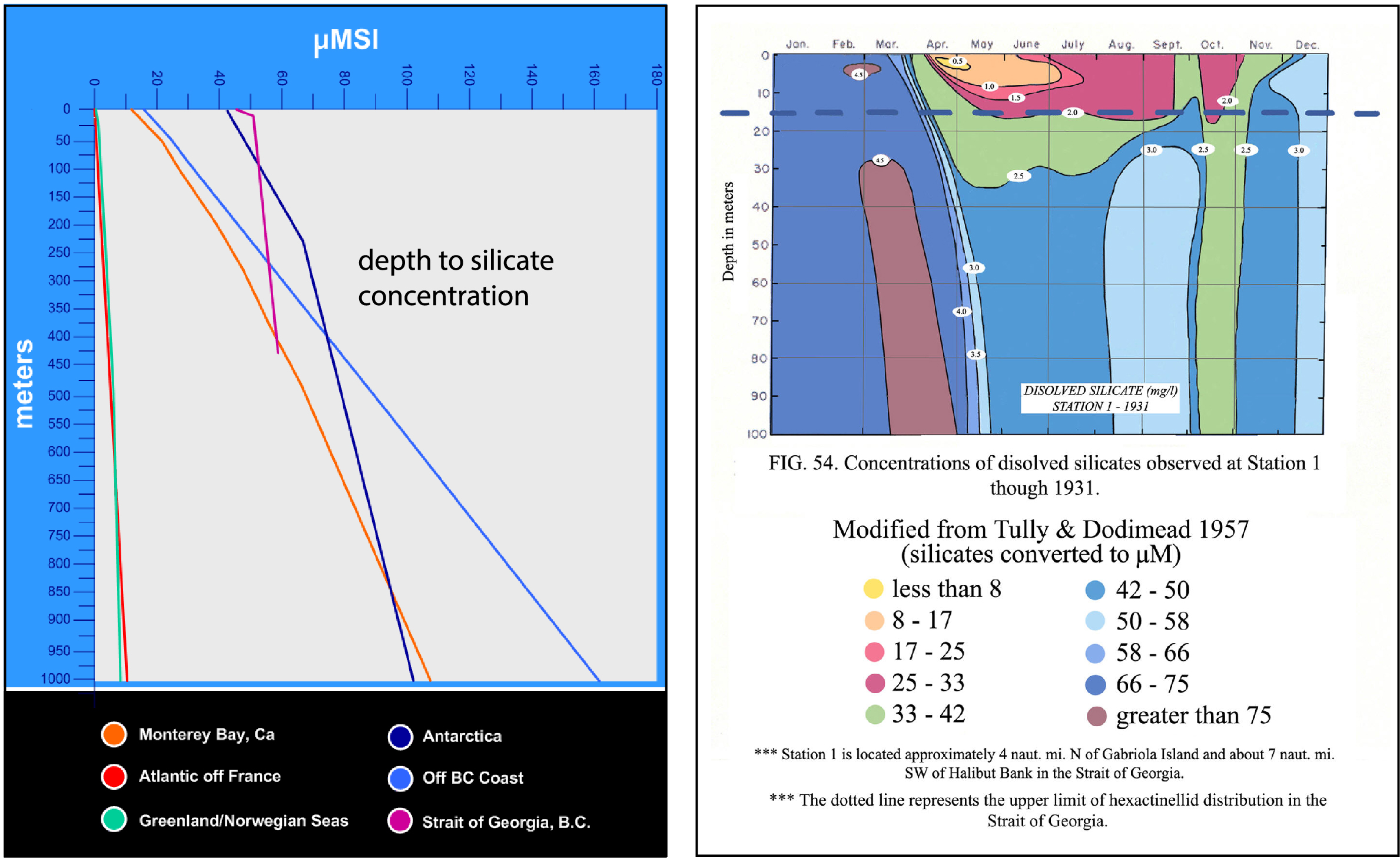 Charts showing silicate concentrations in various seas and depths.  The shallowest record (2m depth) is in Seymour Narrows where high silicate levels occur throughout the water column due to vertical mixing (Thomson et al. 1980 & unpublished info 2003. The highest silica concentration, near the surface, is in the Strait of Georgia (magenta line).