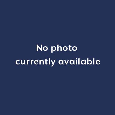 Hymedesmia sp. new record.jpg