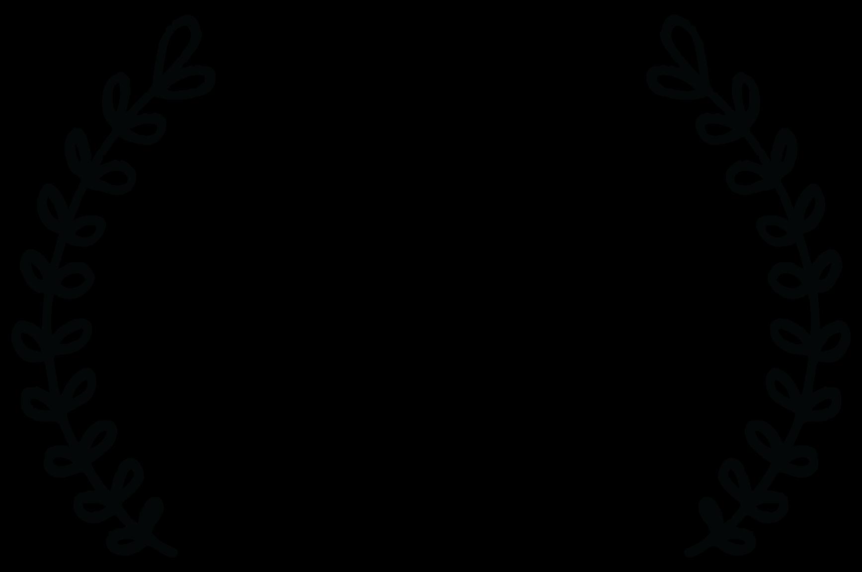 QUARTER FINALIST - Lexus Short Films Competition - 2017.png