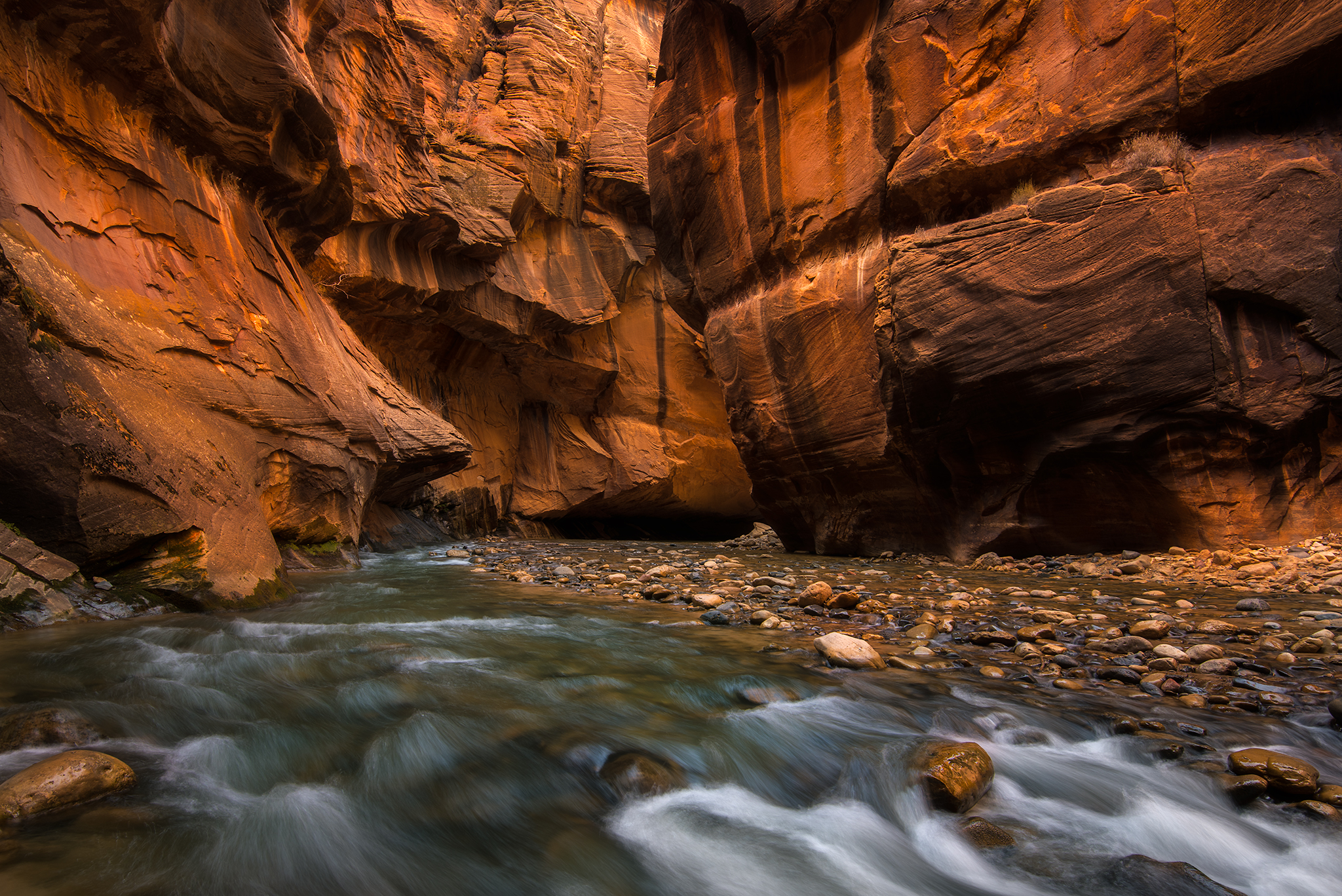 Yep - We also went to the narrows. Fun story - Aybars dropped his D800 in the water shortly after this. It still lives and take pictures of cats (he moved to Boston) to this day!