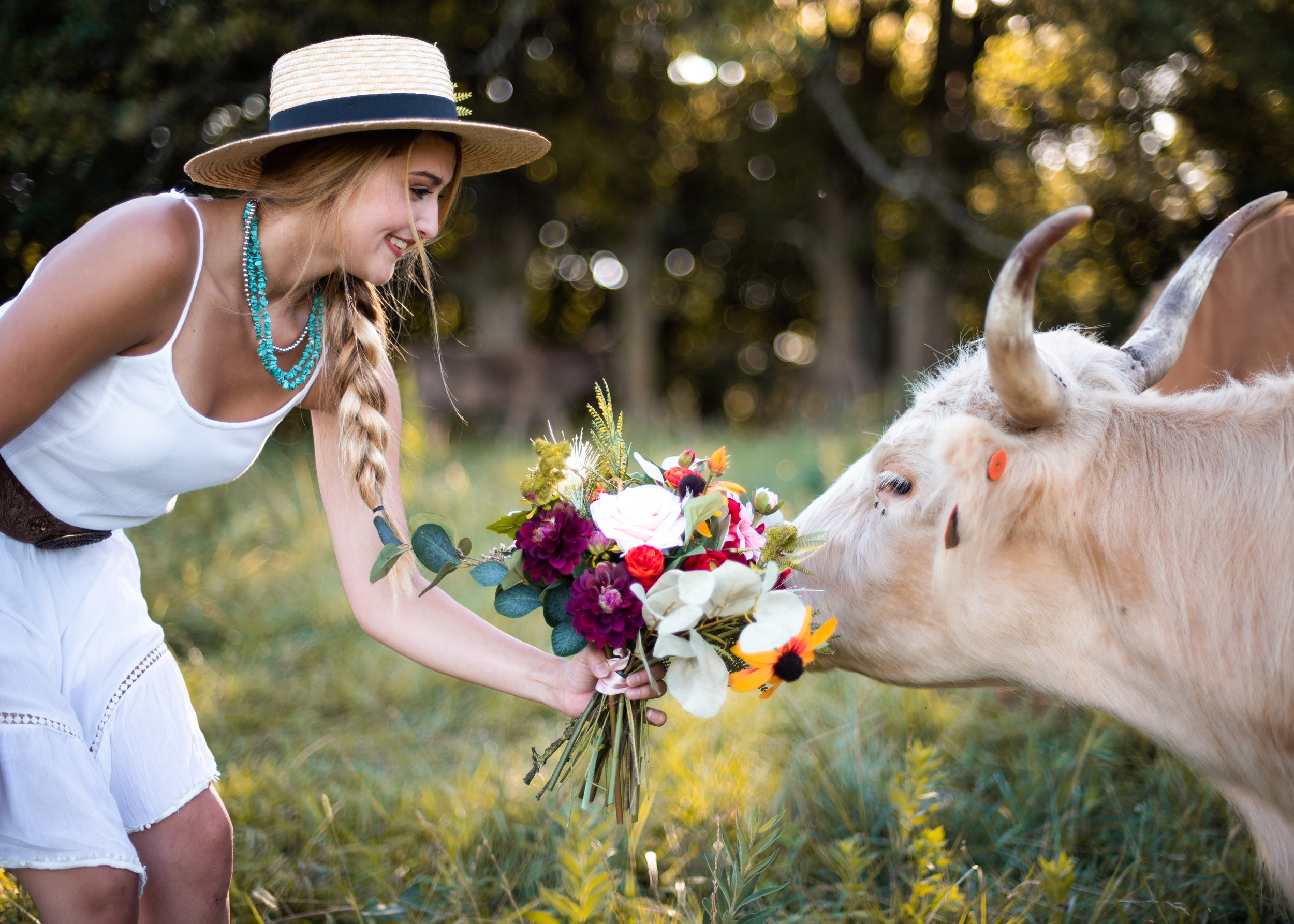 Highland Cattle - Styled Shoot - McKinley Rayne Photography