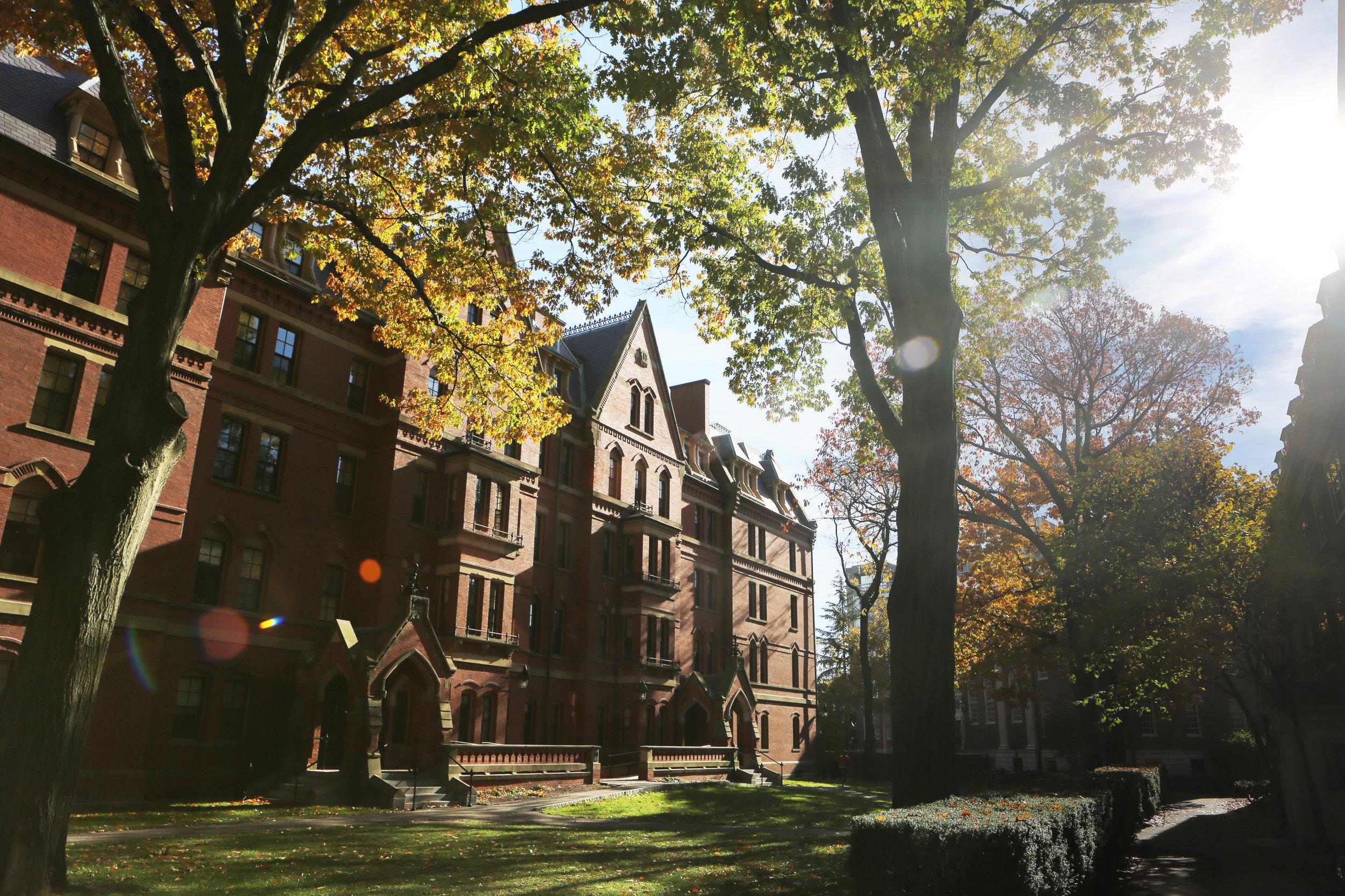 harvard-university-zen-admissions