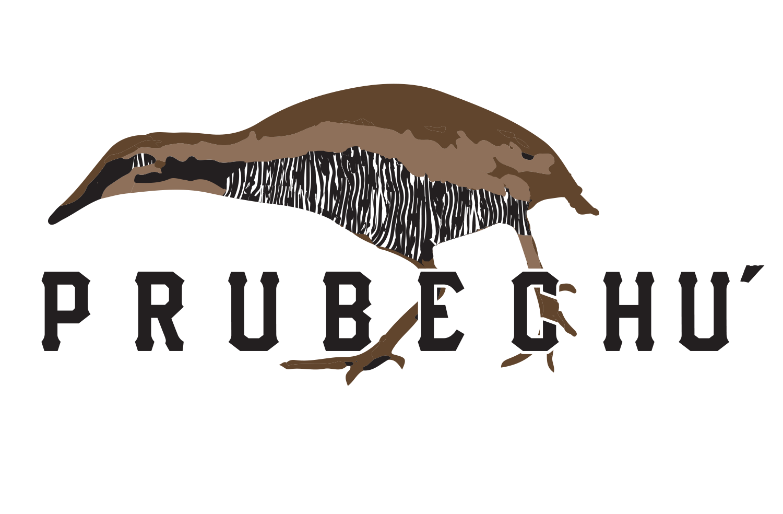 prubechu logo.png
