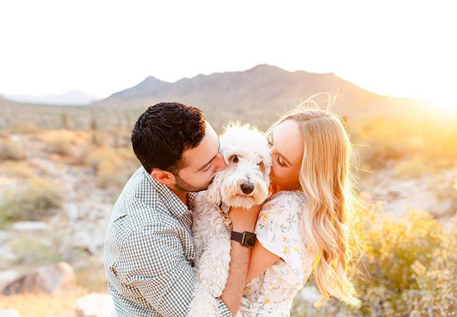 Heading to the magic of the desert this evening for minis and can't wait to see sweet families laugh & snuggle in that dreamy golden light! 😍