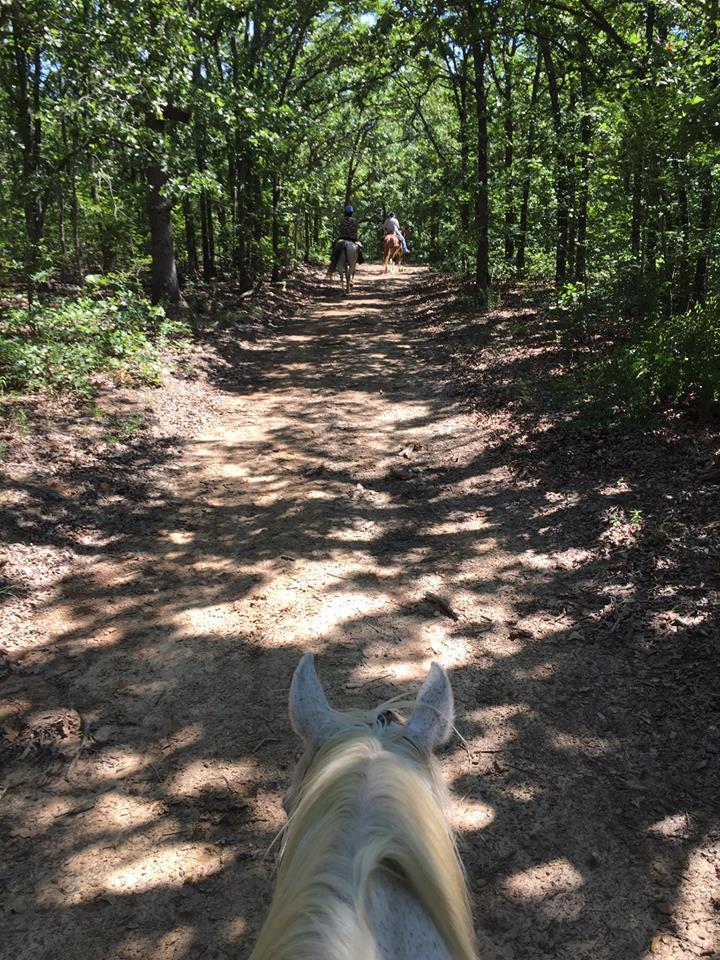 Dream Point Ranch Trail Rides 5.jpg