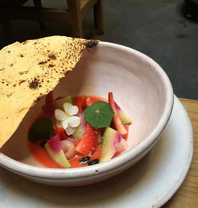 Lo bonito de que la fresa en Mexico no se tan dulce es que la podemos usar de formas creativas. Esta semana salen en el aguachile! #masalaymaiz