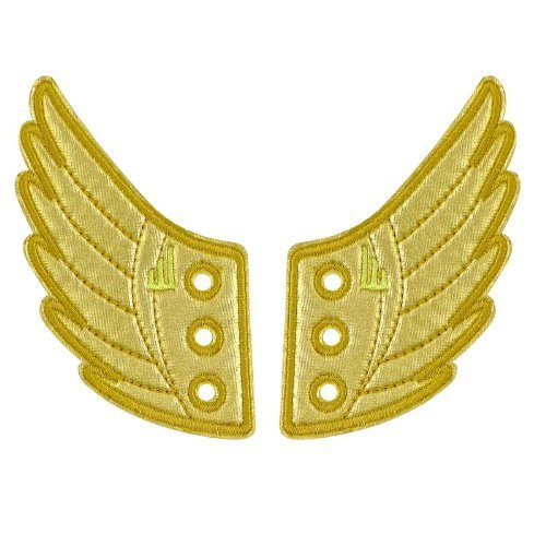 Gold Shoe Wings