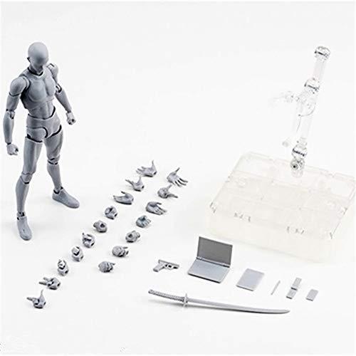 Male Figure Model