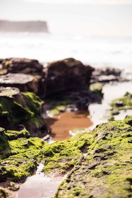 nature travel photography Bernadette Meyers Sydney beach