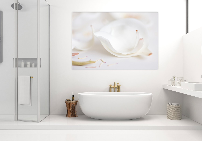 White magnolia petal fine art nature photograph, home decor prints, Breeze pics