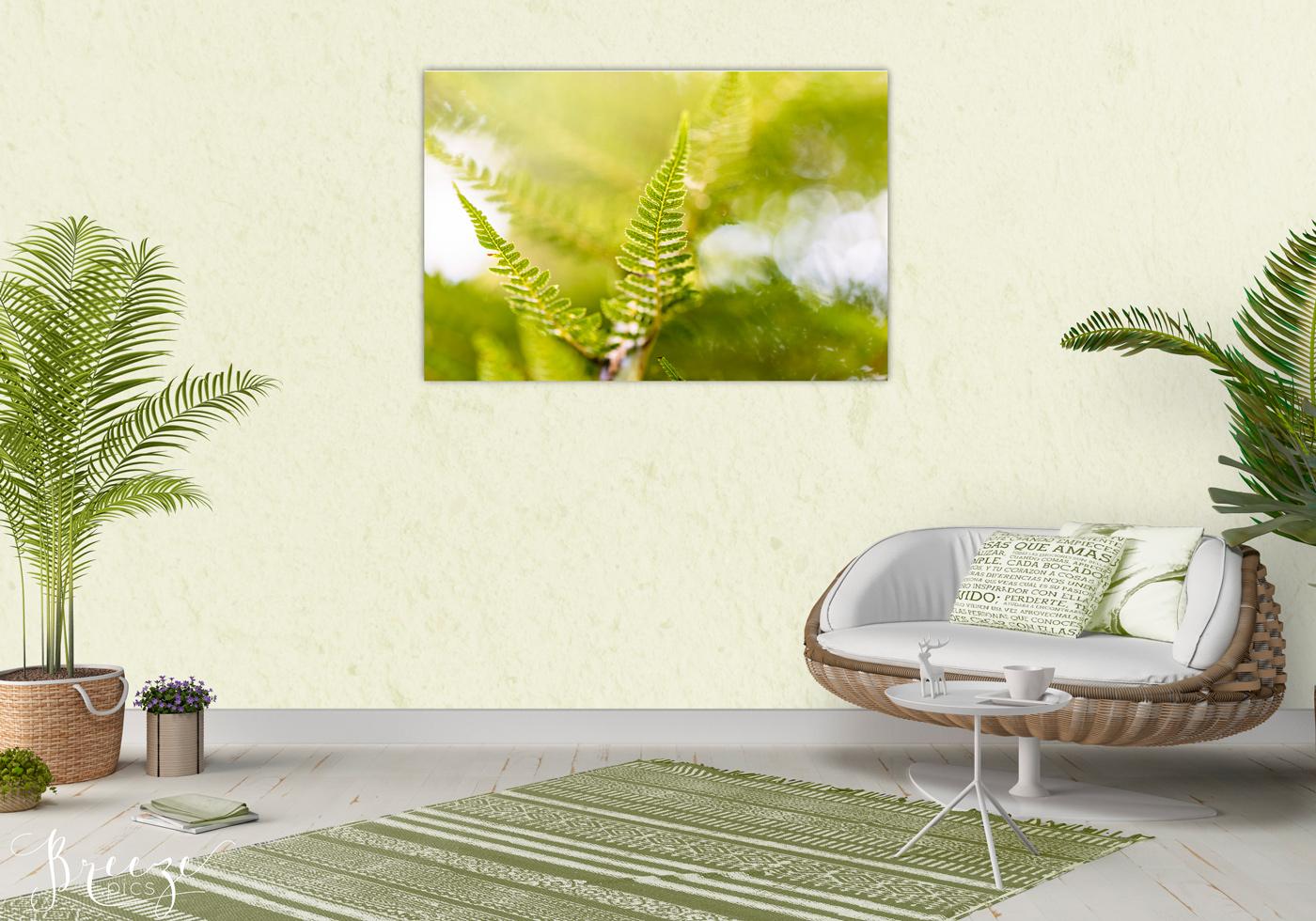 Green fine art nature photograph, home decor prints, Breeze pics