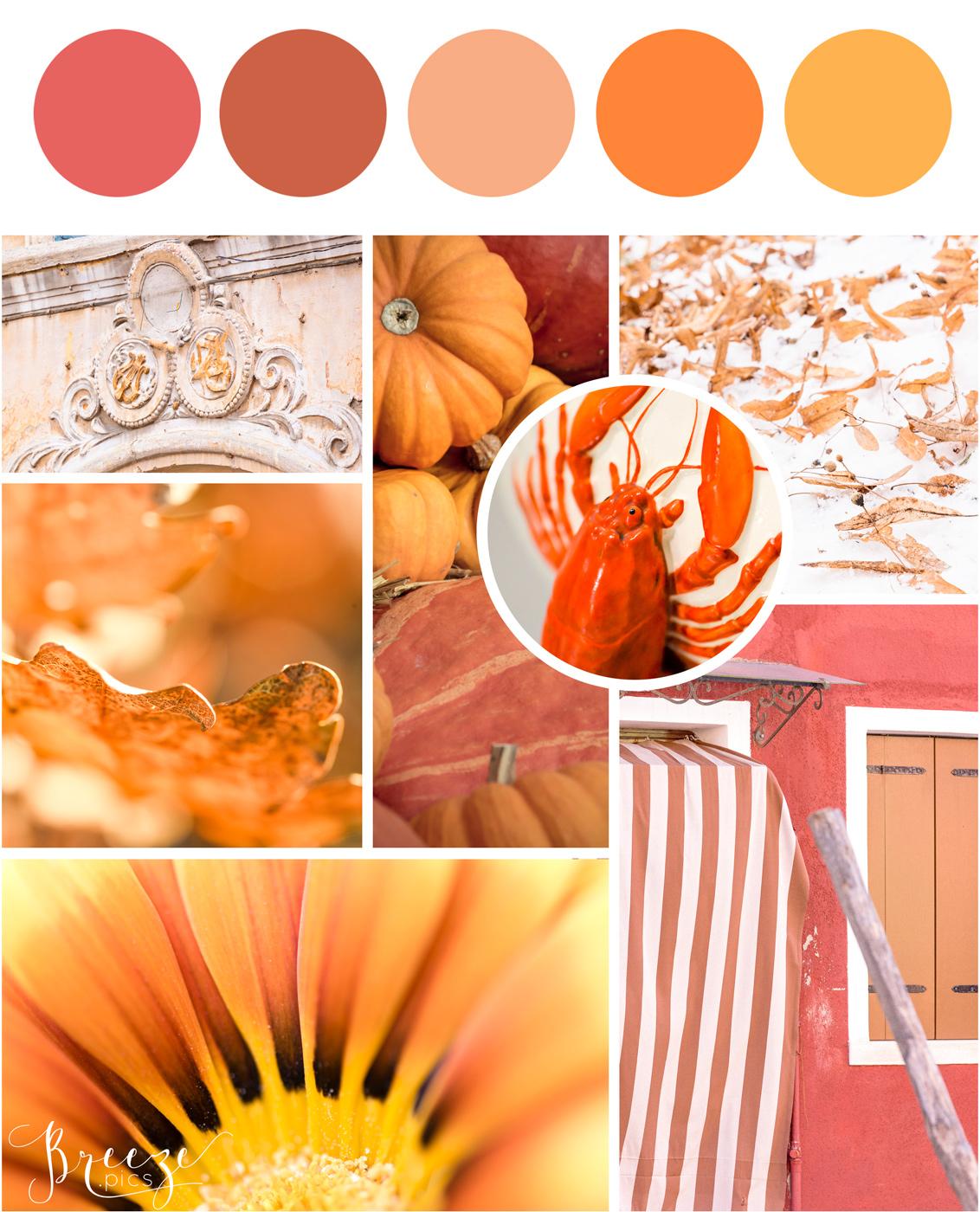 Orange mood board, creating a sanctuary at home, Breeze Pics