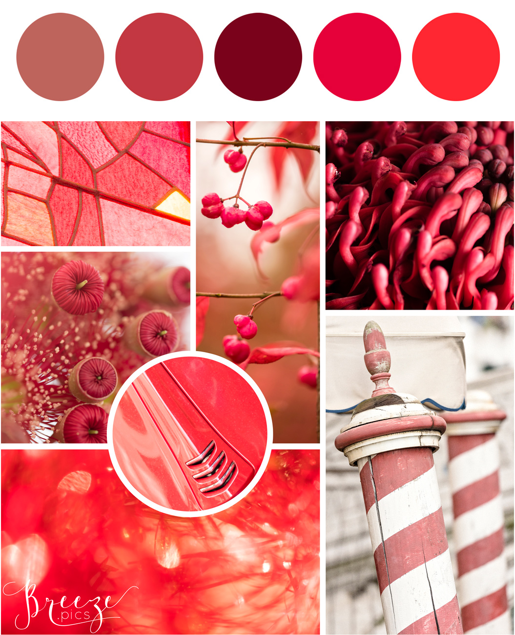 Red mood board, creating a sanctuary at home, Breeze Pics