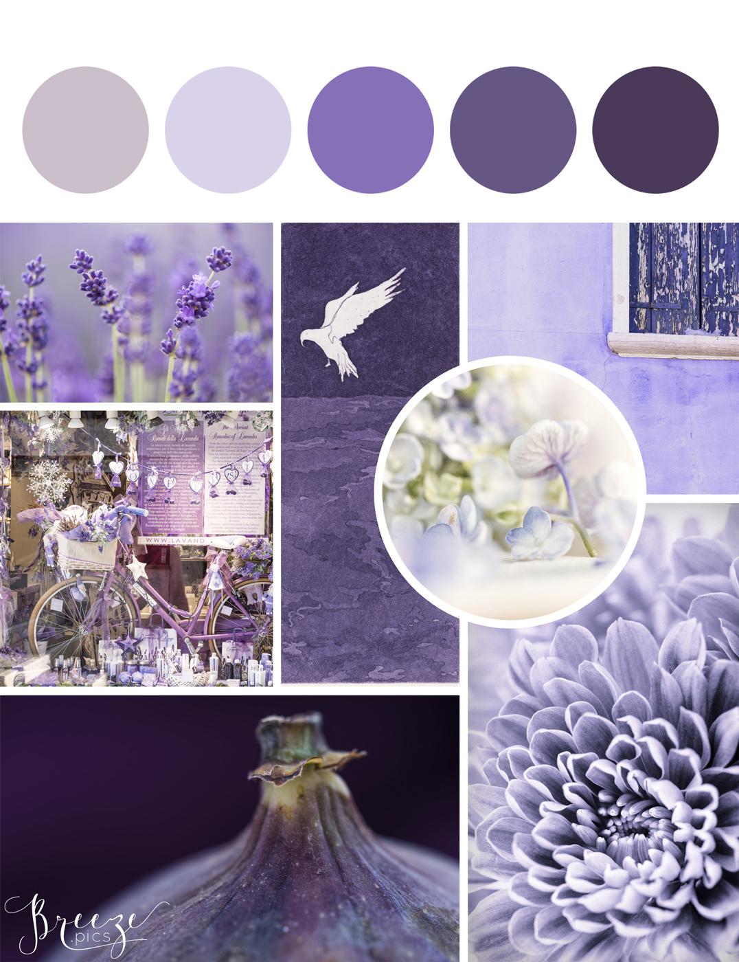Purple mood board, creating a sanctuary at home, Breeze Pics