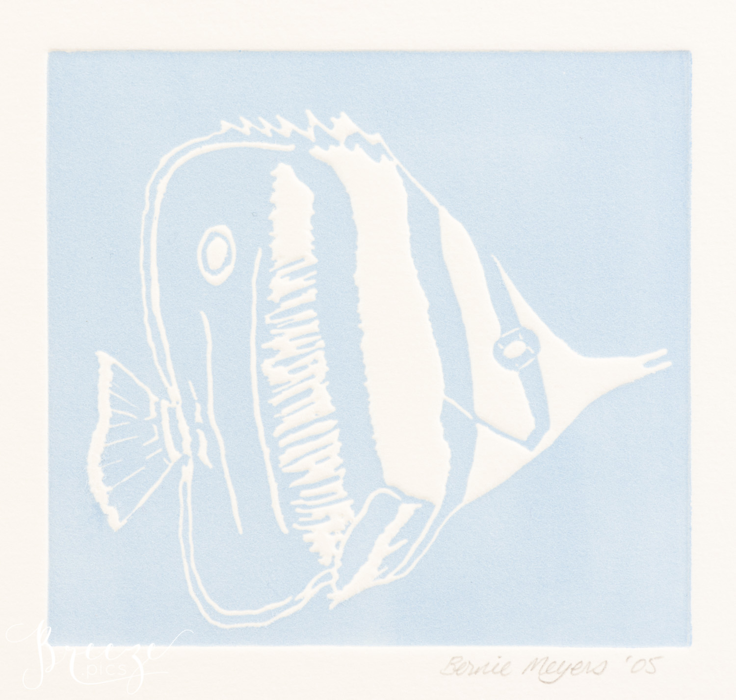 angelfish relief print limited edition fine art print