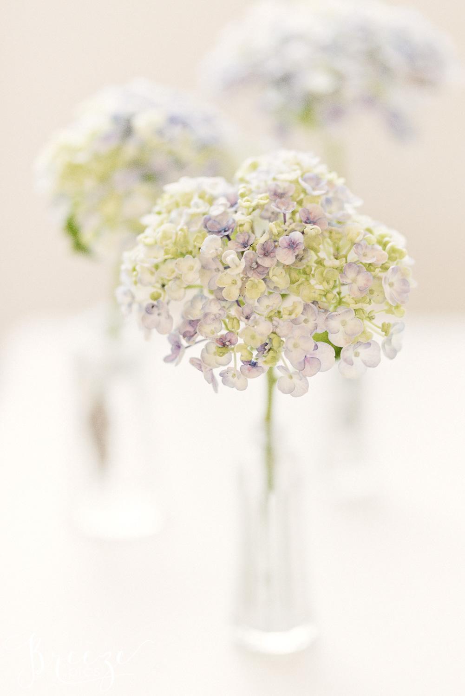 pastel blooms limited edition fine art print, Bernadette Meyers