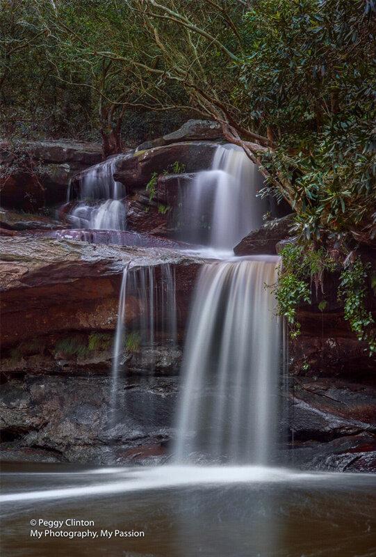 Surprising location and waterfall - Warriewood Wetlands, Warriewood  Traveller Reviews - Tripadvisor