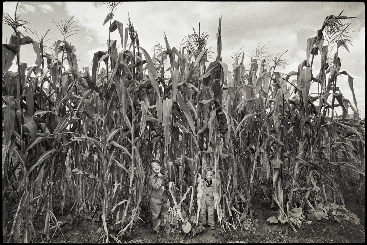 "LISA LAW | Kids in the Corn, Pilar and Solar on Law farm, Truchas, New Mexico, 1973"" 42 x 55 Archival Pigment Print"
