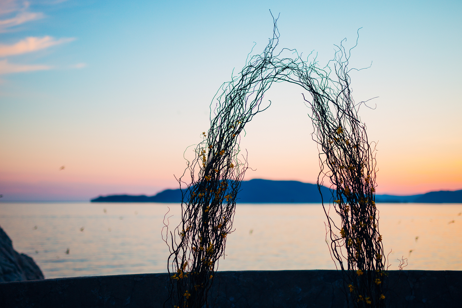 Who needs more than a few willow branches when you have a sunset ocean backdrop?
