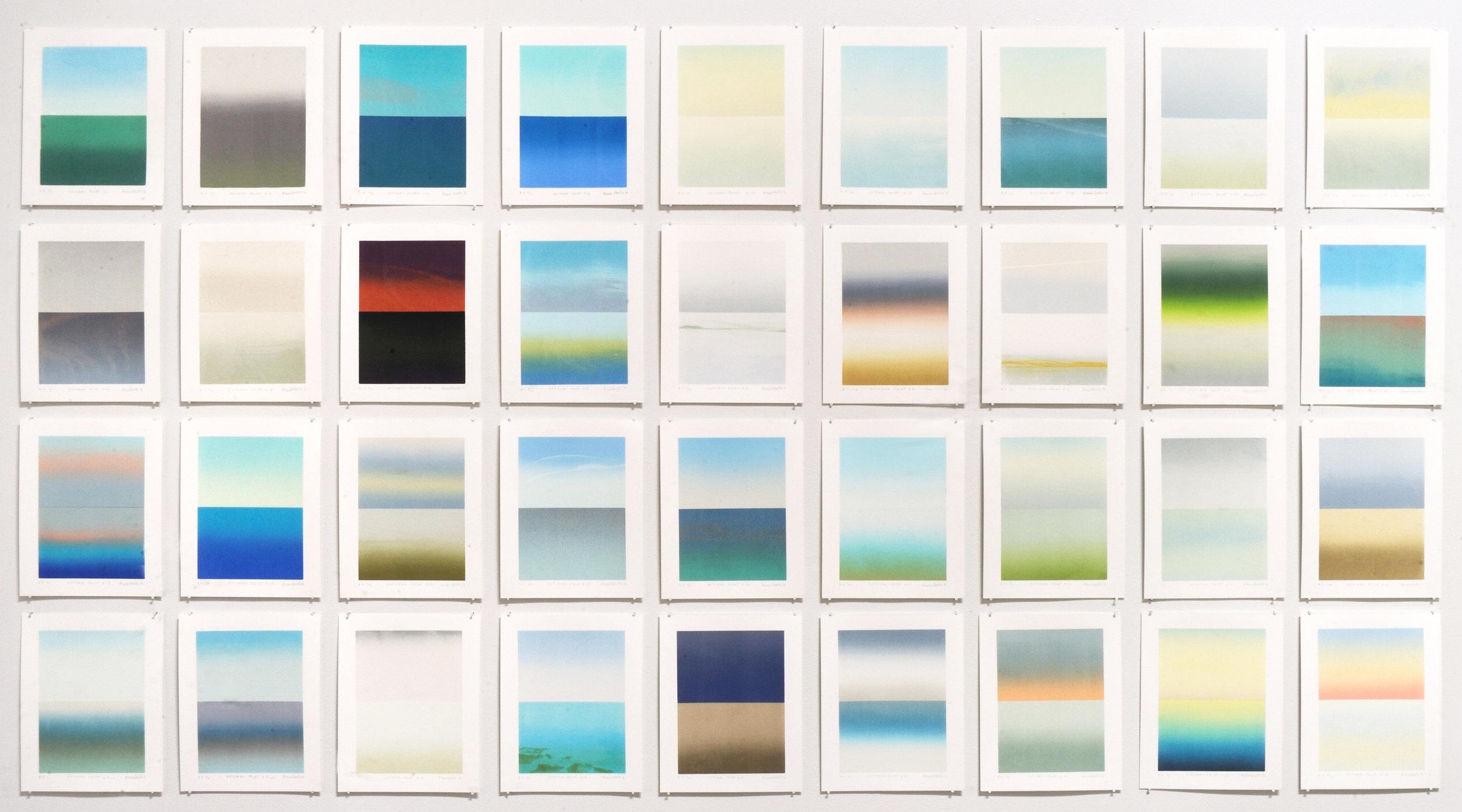 """Anne Smith,  Potomac Prints,  2016, silkscreen, 8"""" x 10"""" each print. Photo: Greg Staley."""