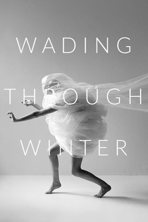 wading through winter white.jpg