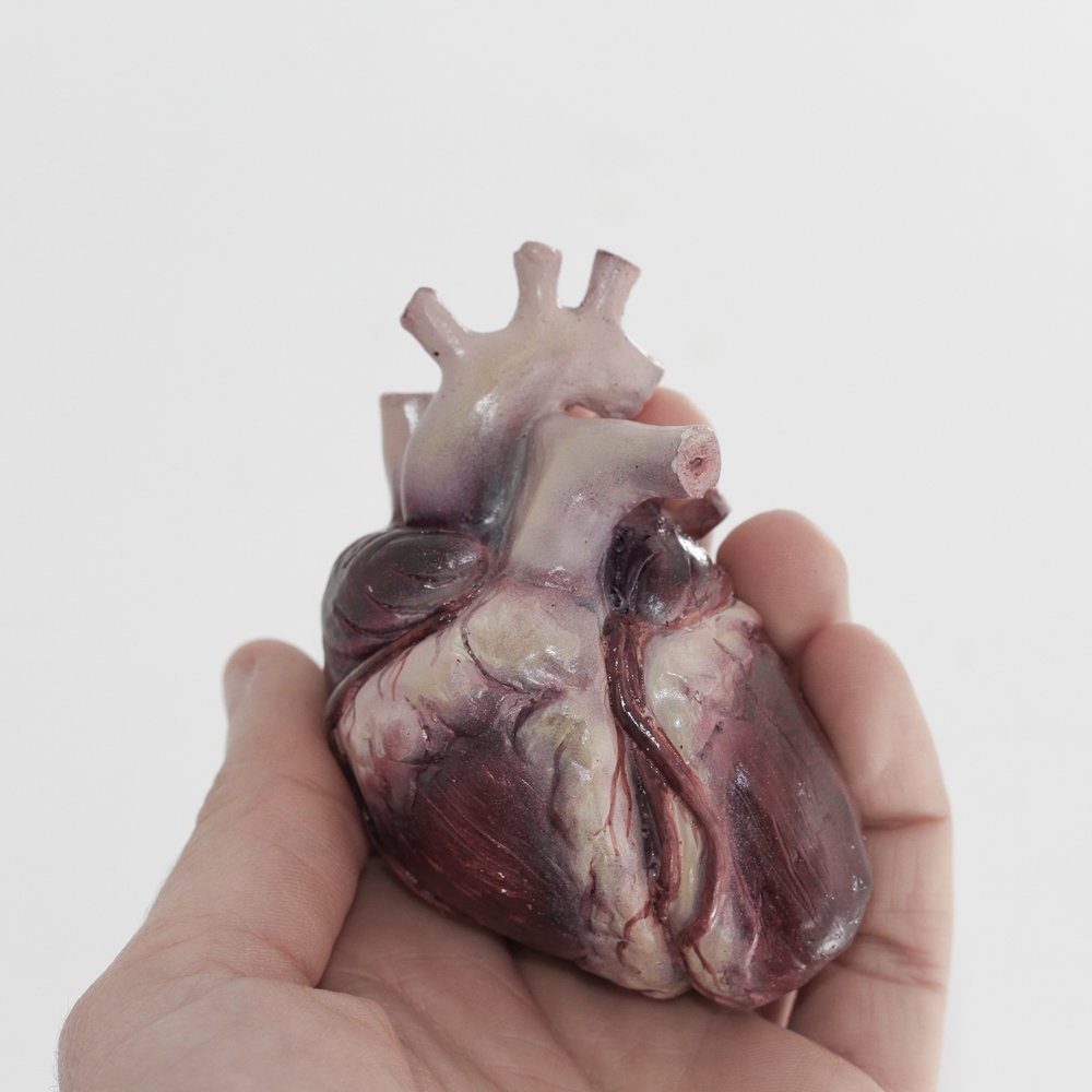 Miniature anatomical model of the heart, cast in resin, created as part of an honours project