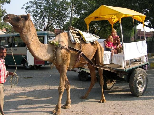 ride to Taj Mahal.JPG