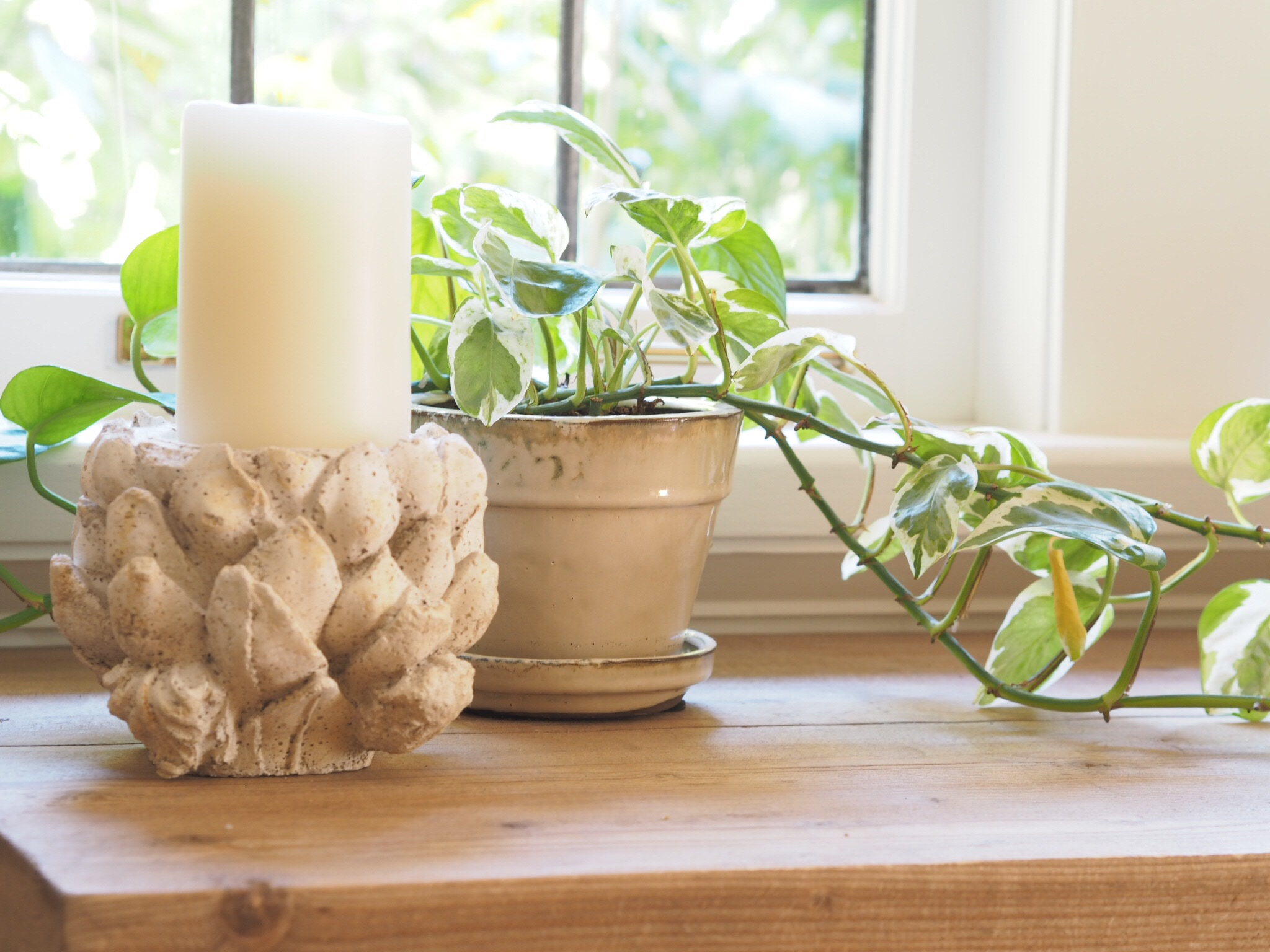 white candle with plant.JPG