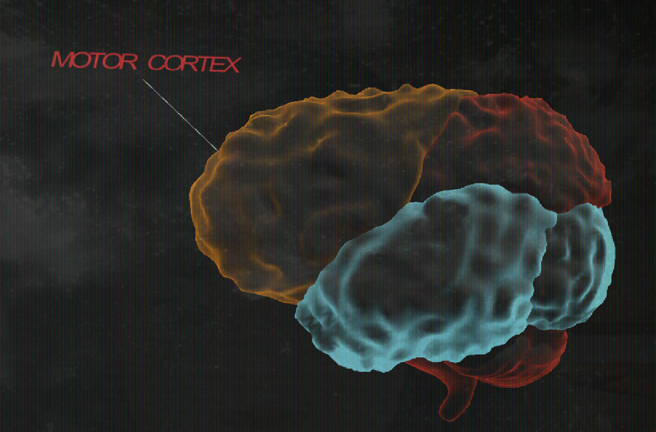 Cache22_Brain.png
