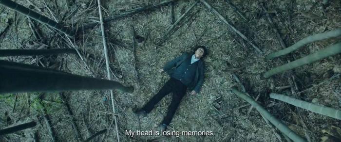 amaris_woo_memoir_of_a_murderer_movie