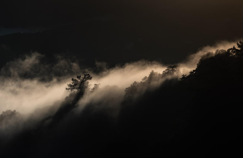 lishan-mountain-taiwan