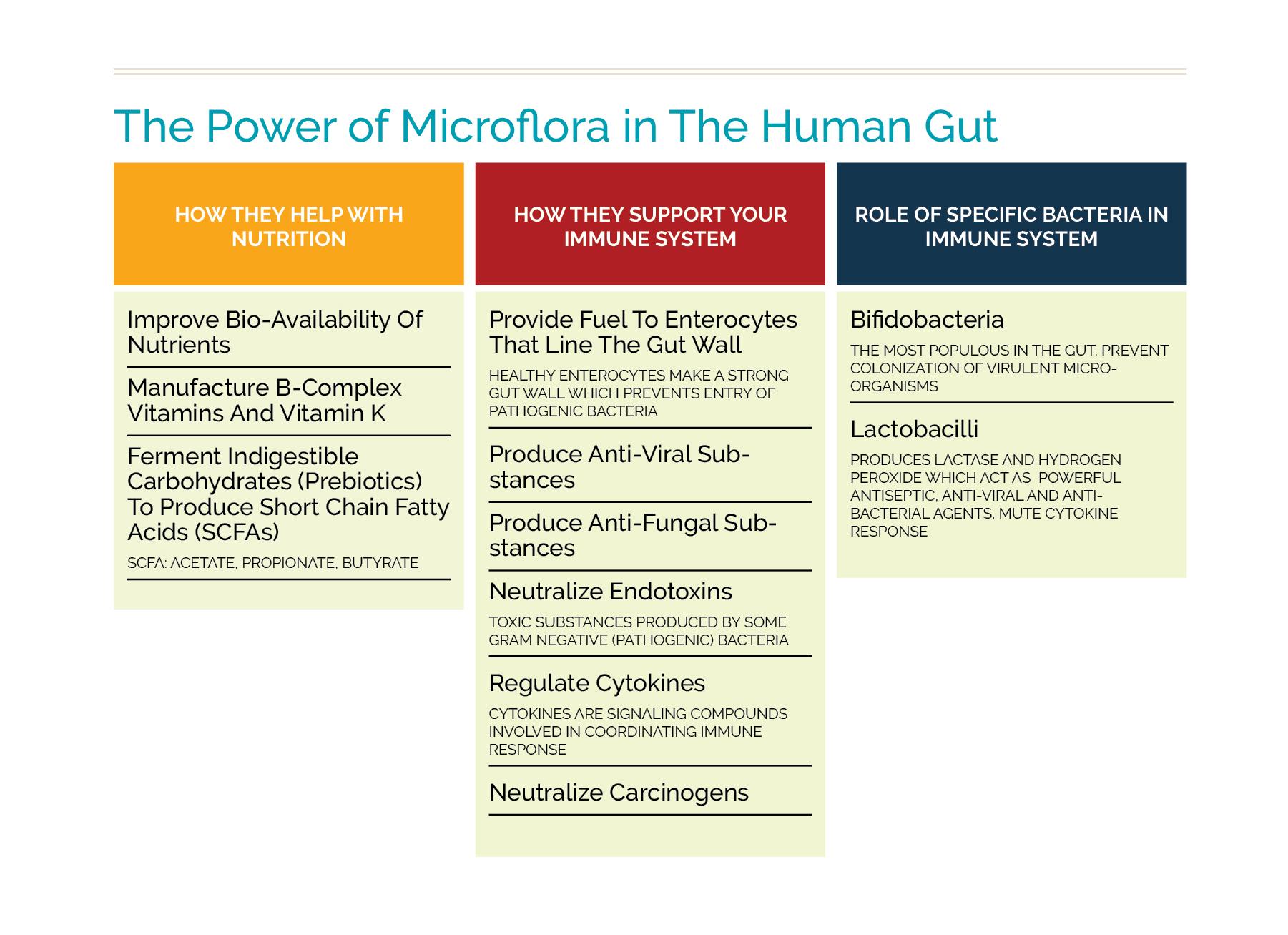 power of microflora.jpg