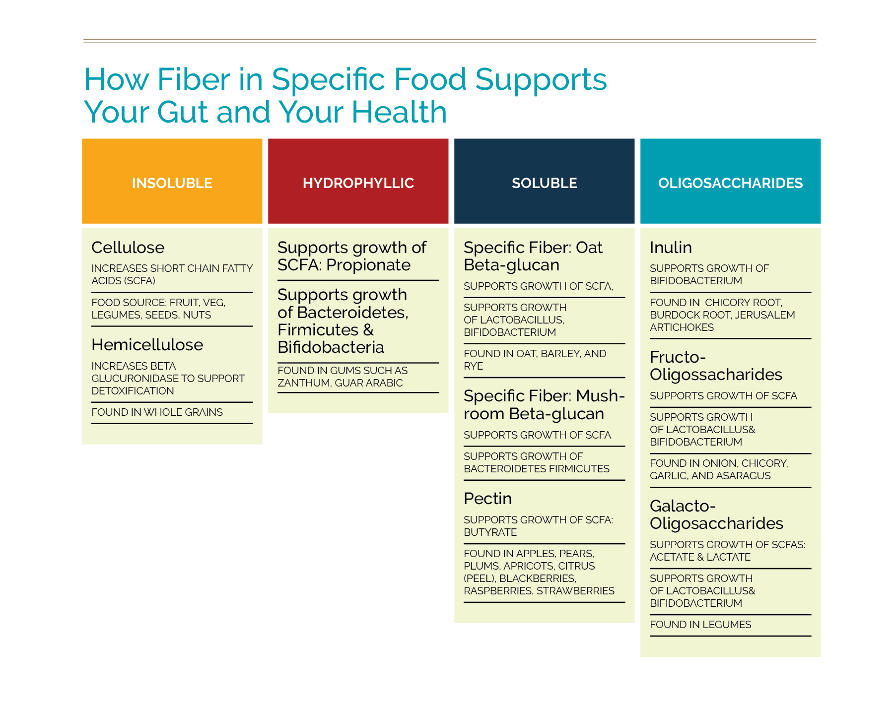 fiber and your gut.jpg