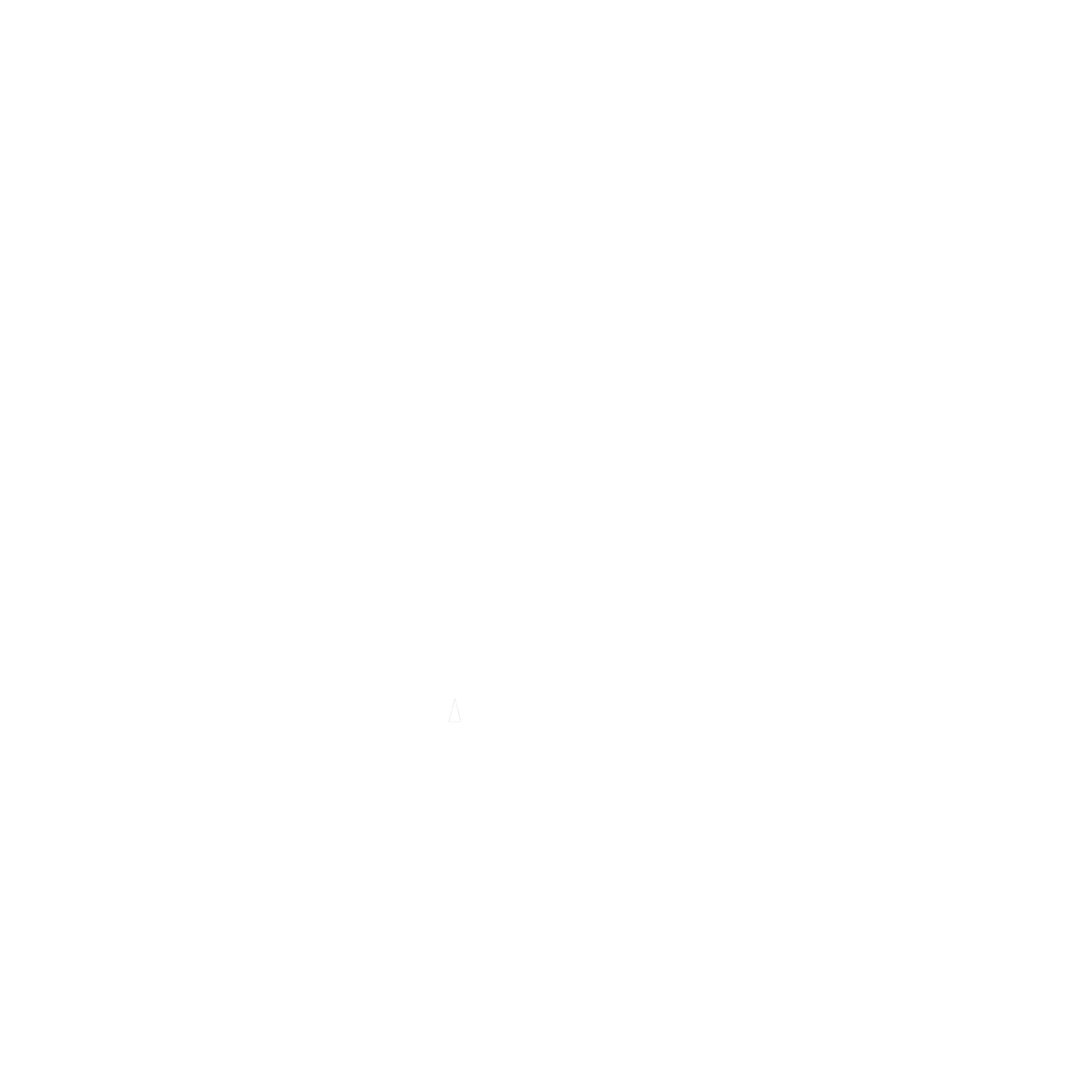 human rights watch small.png