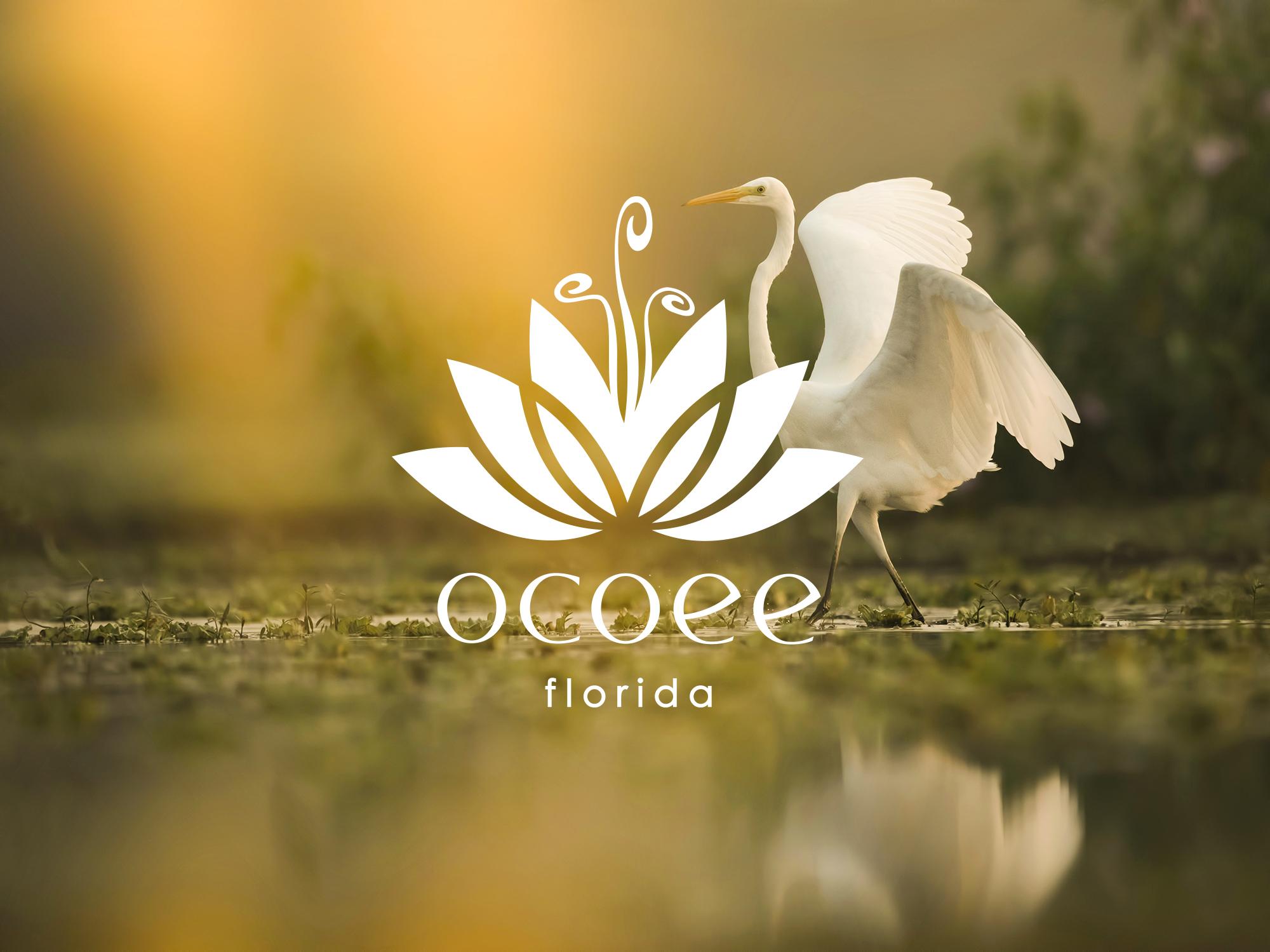 Designing for Ocoee