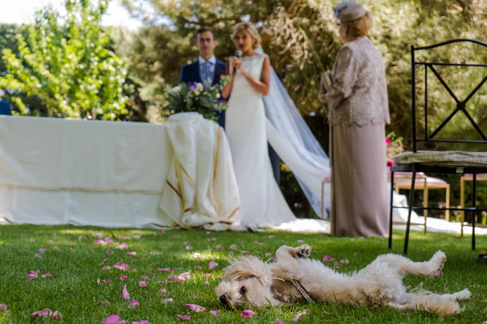 Boda-Sajorami-Beach-Cadiz-Zahora-Pedro-Gema-engagement-Rafael-Torres-fotografo-bodas-sevilla-madrid-barcelona-wedding-photographer--8-2.jpg