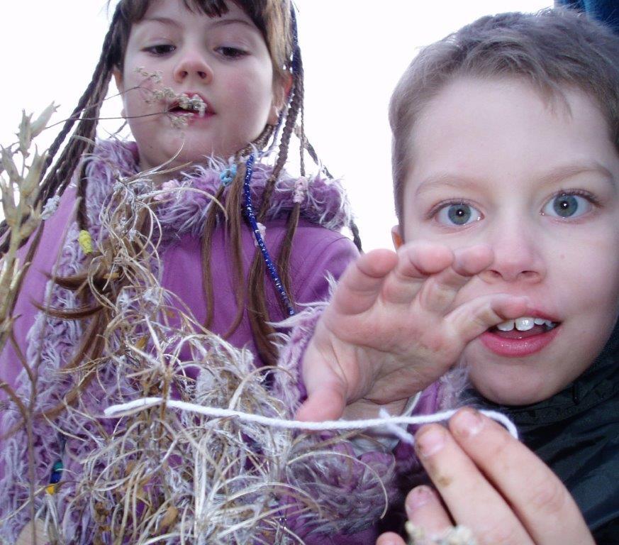 Minstead Study Centre help fund sustainability education