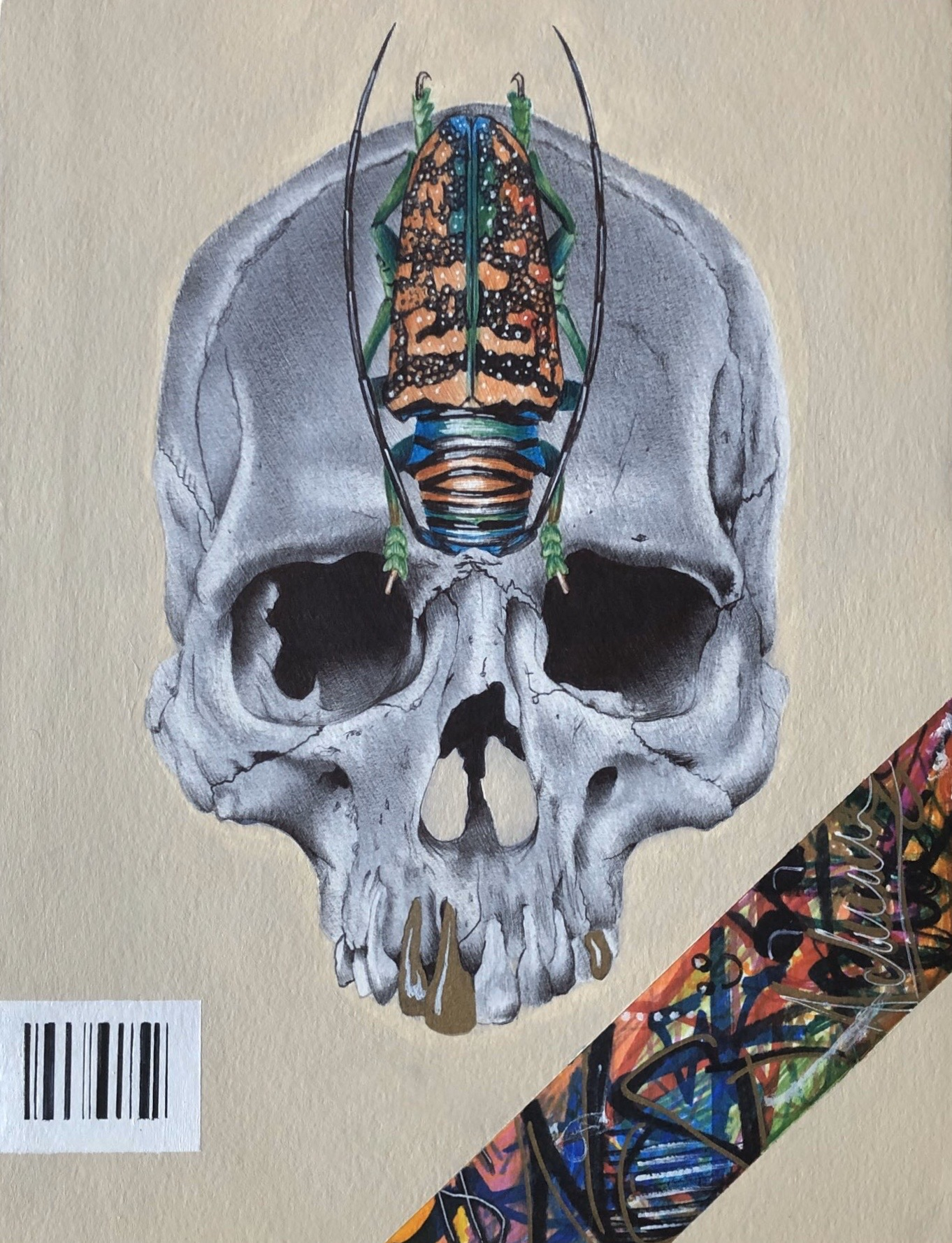 Sternotomis Mask