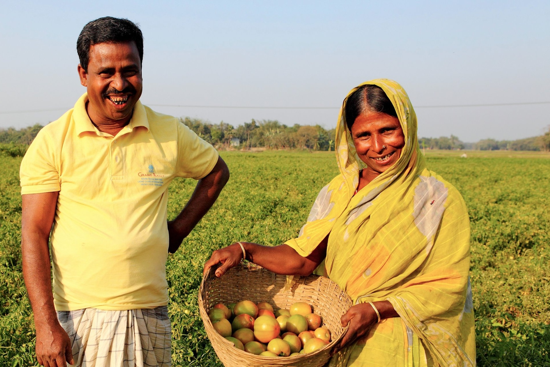 - Smallholders Ambia Khatun and Noor Hossain collect tomatoes. Credit: Traidcraft Exchange\GMB Akash