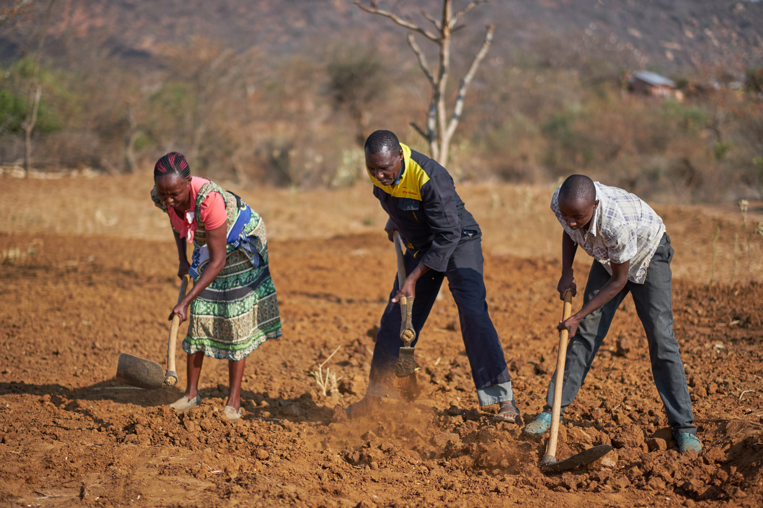 - Smallholder farmers participating in the FIVE project work their land in Kanzui, Eastern Kenya. Credit: Traidcraft Exchange/Khadija Farah