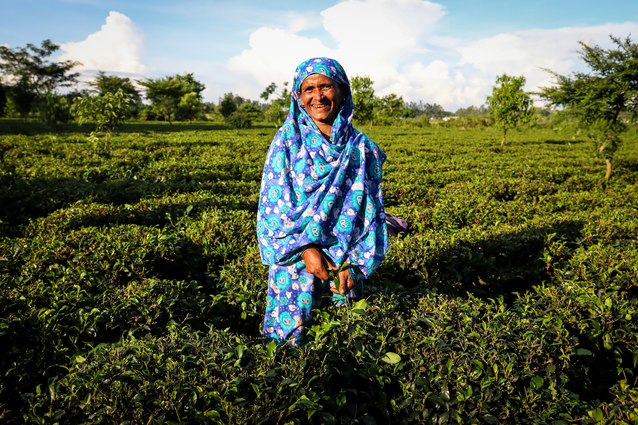 Shufia Begum, a 'Barefoot Service Provider' providing 'last mile' services to her fellow tea growers in northern Bangladesh. Credit: Traidcraft Exchange