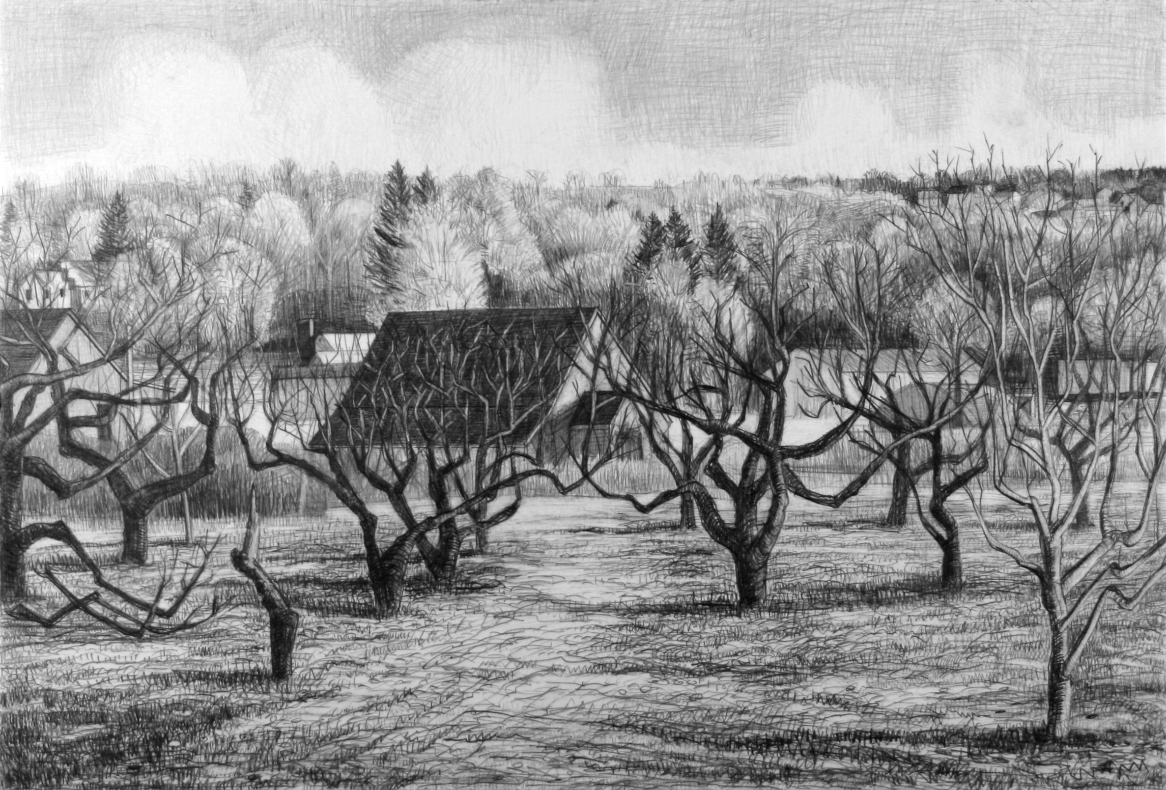 "Houses at the Edge of the Orchard   Pencil, 15x22"", 1998"