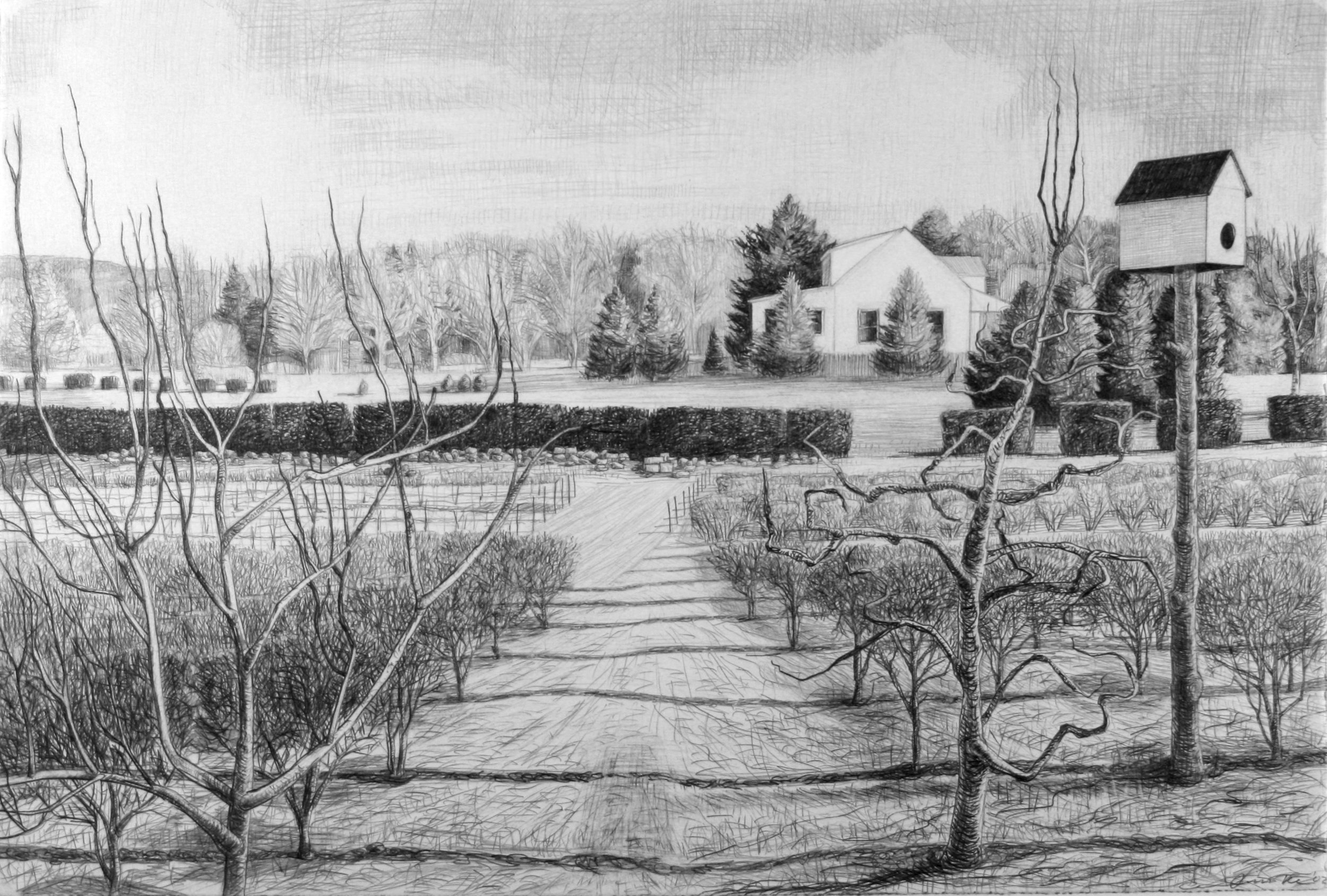"Bird House in the Orchard  Pencil, 15x22"", 1998"